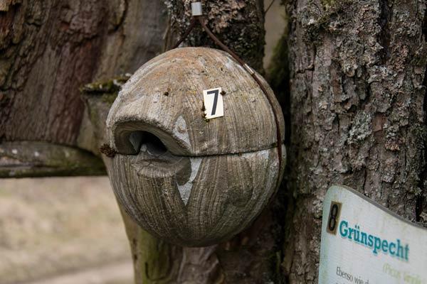 Vogellehrpfad Oberhochstatt
