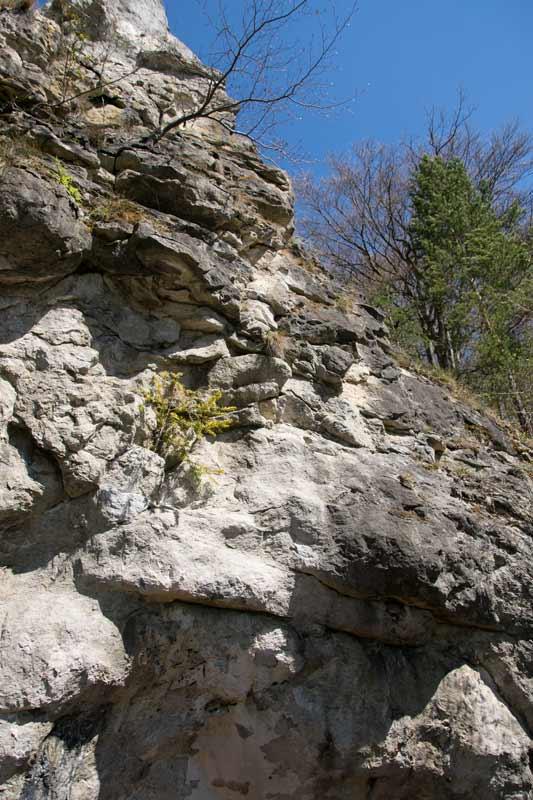 Höhle Altmühltal