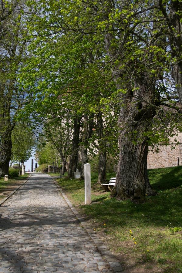 Auffahrt Schloss Spielberg