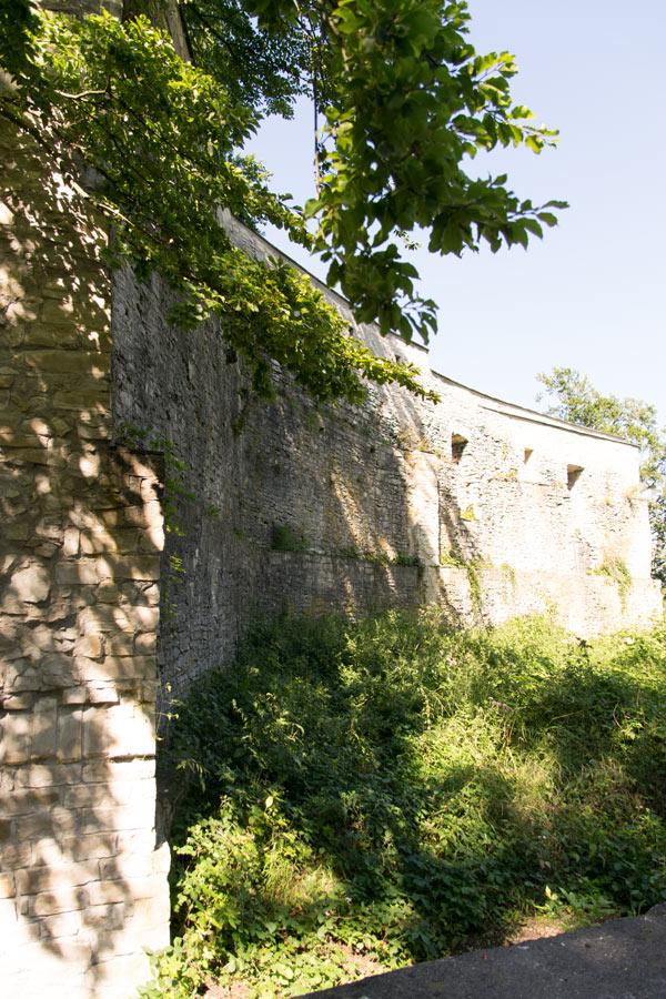 Alte Burg Neuburg an der Donau, Donaumoos