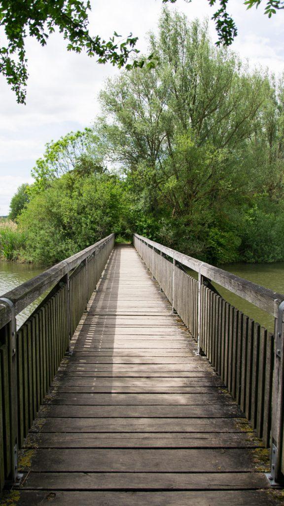 Vogelinsel Altmühlsee Holzbrücke