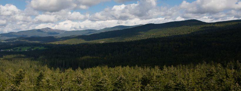Ausblick Bayerischer Wald