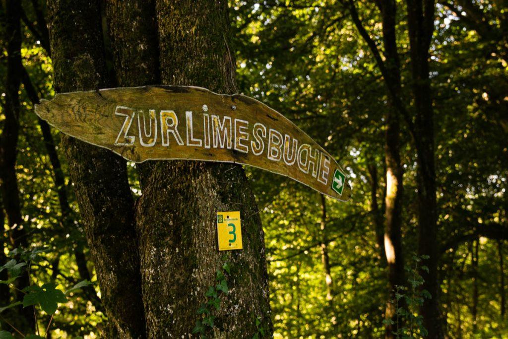 Limesbuche