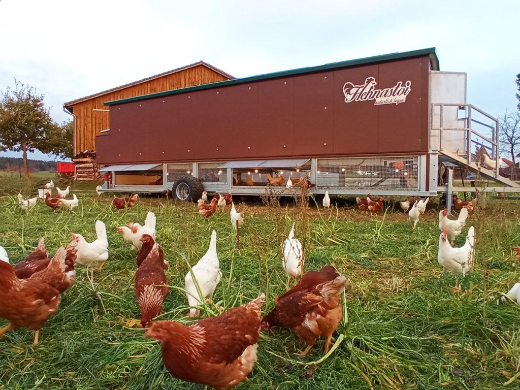 Osterdorfer Landgenuss - Mobiler Hühnerstall Altmühljura in Franken bei Pappenheim