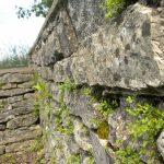 Limesturm Burgsalach