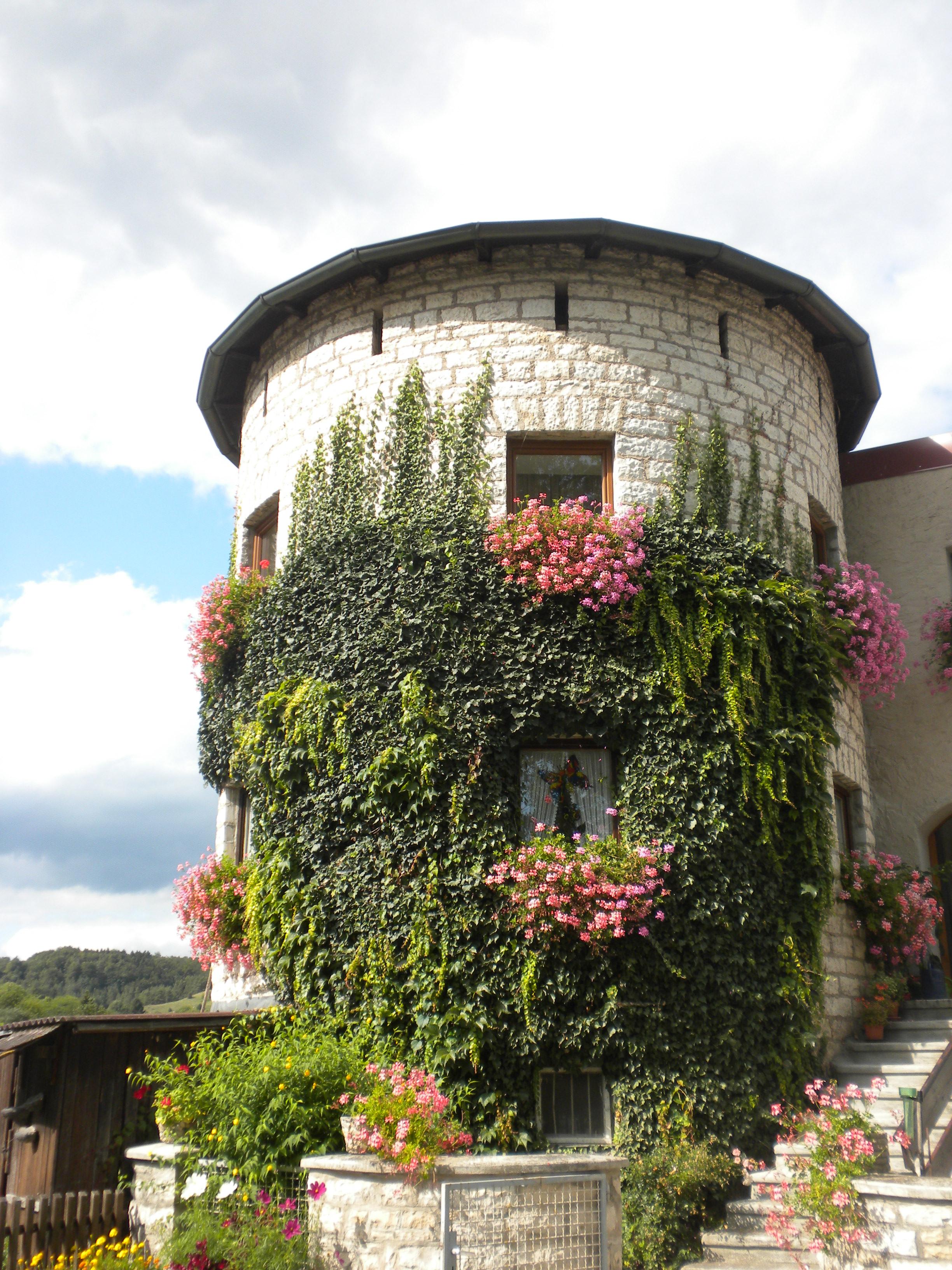 Burg Dollnstein Turm Altmühltal