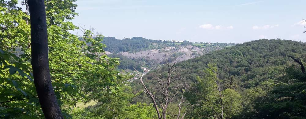Ausblick Rundwanderweg Mörnsheim