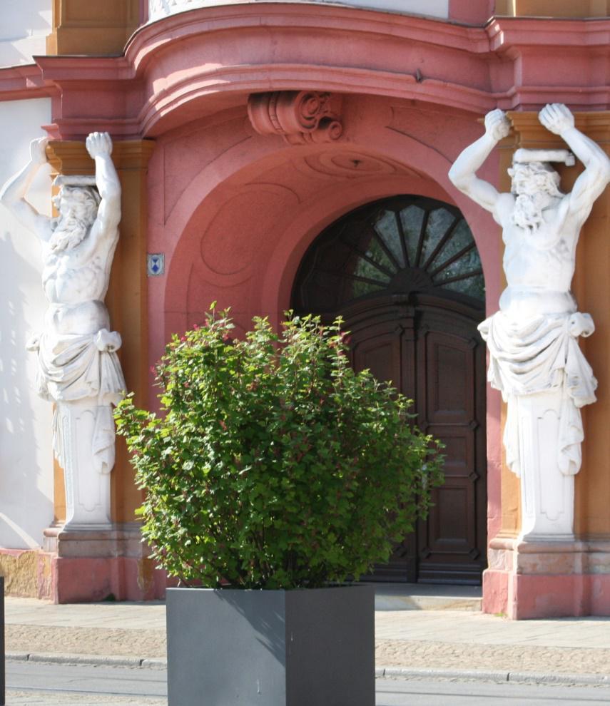 Erfurt Eingangstür