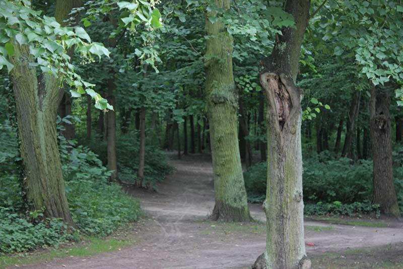 Beeskow-Park