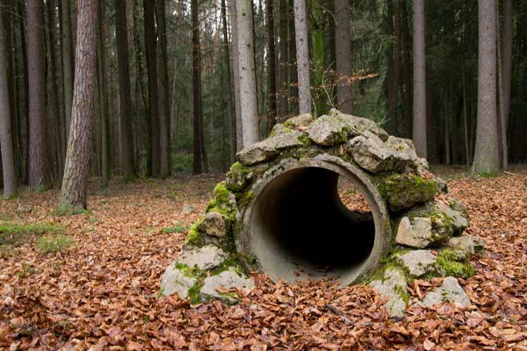 Höhlenkundlicher Weg