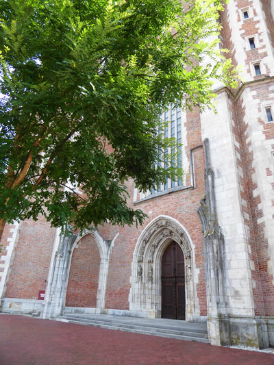 Münster Ingolstadt