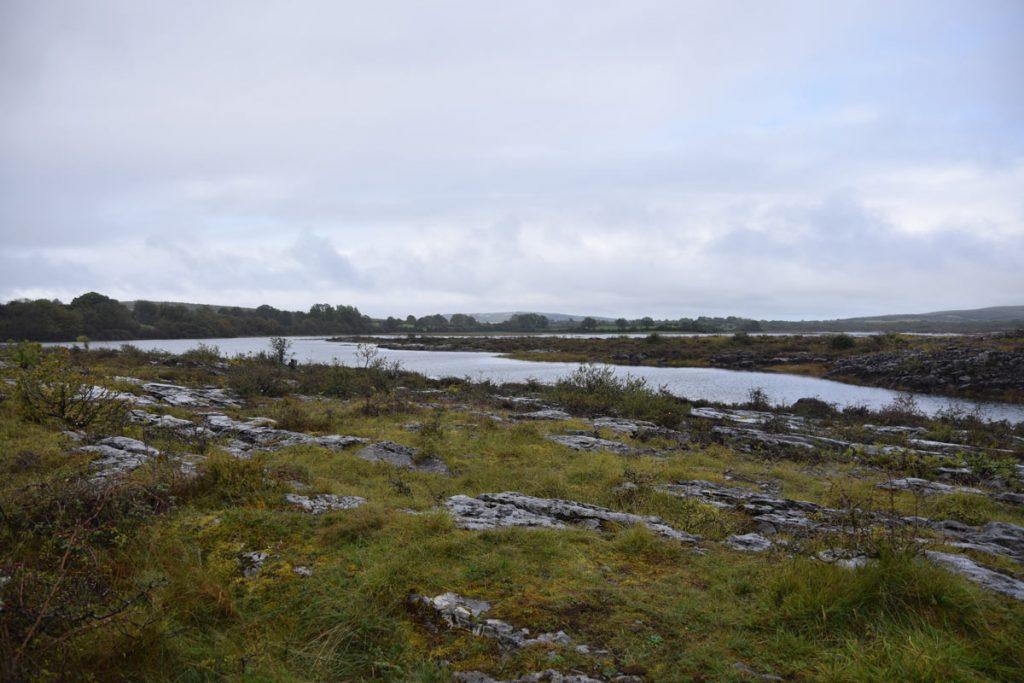 Burren Karstlandschaft Irland