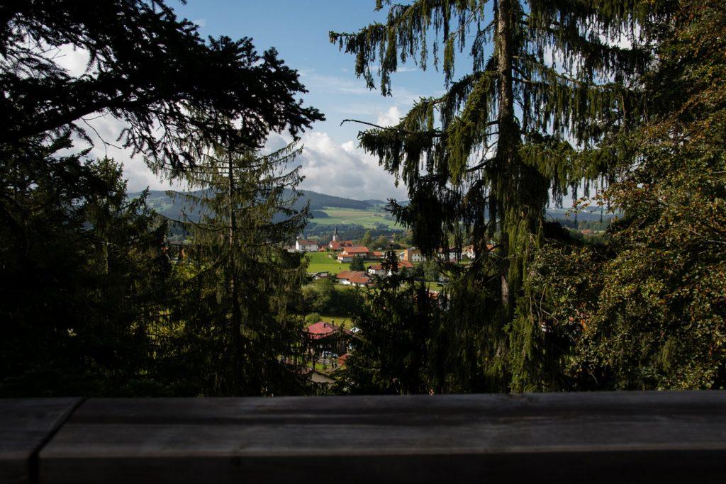 Bayerischer Wald Tierfreigehege Baumwipfelpfad