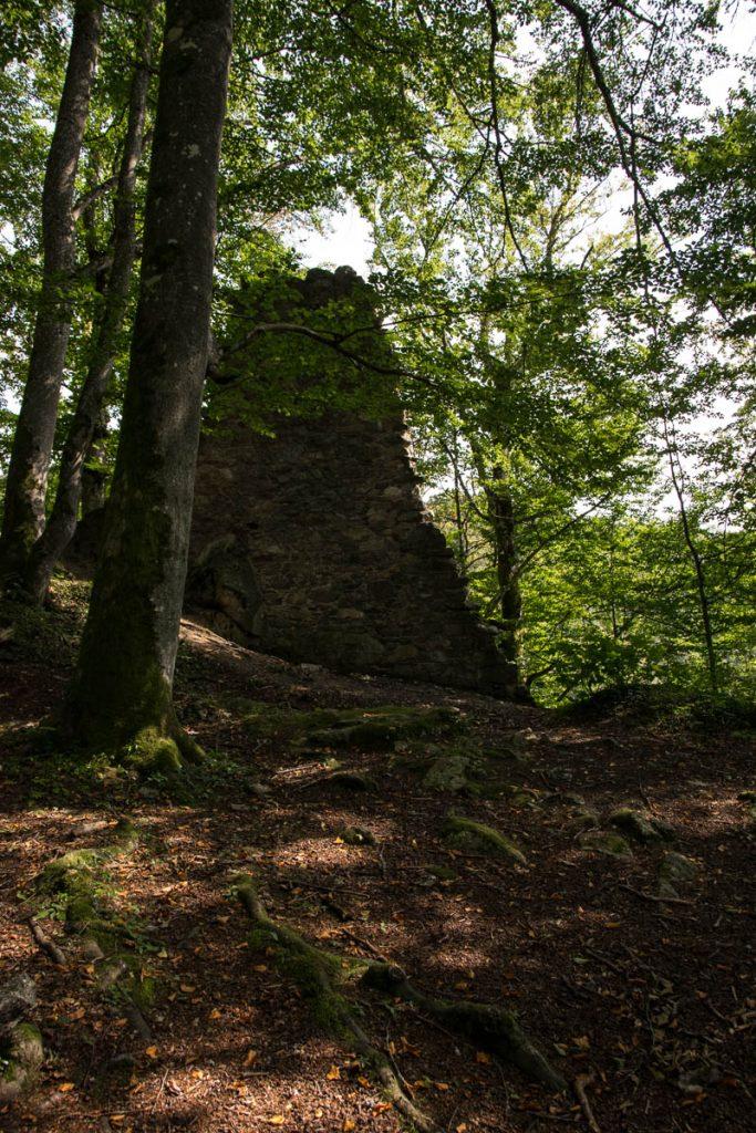 Ruine Wildbachklamm Wanderweg