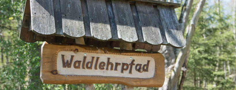 Wichtelweg Walderlebnisweg Hofstetten im Altmühltal