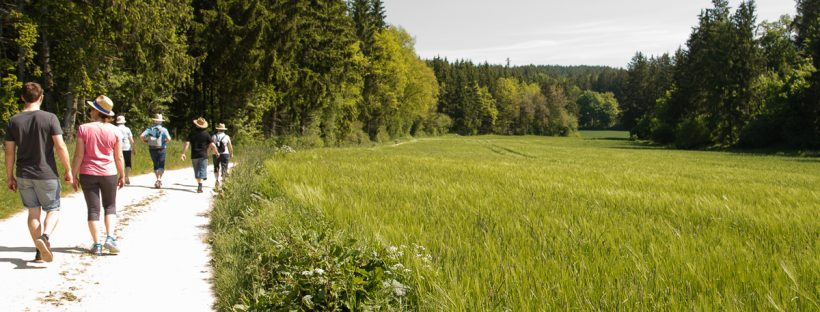 Kräuterweg Böhmfeld